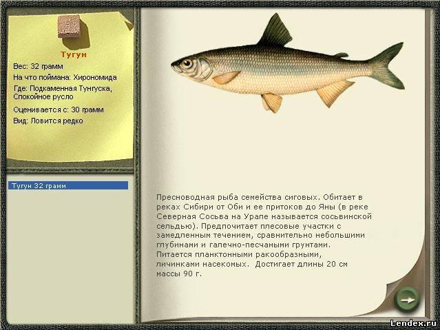 рыбалка форум тугун