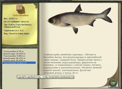 рыбалка толстолобик форум