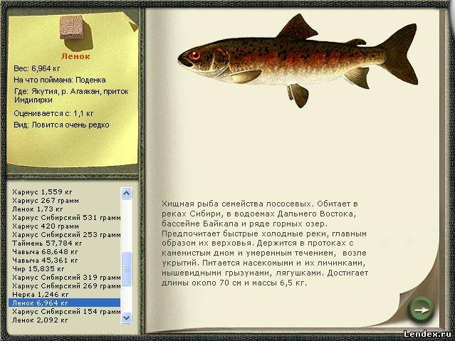 какая прикормка хорошая и для какой рыбы