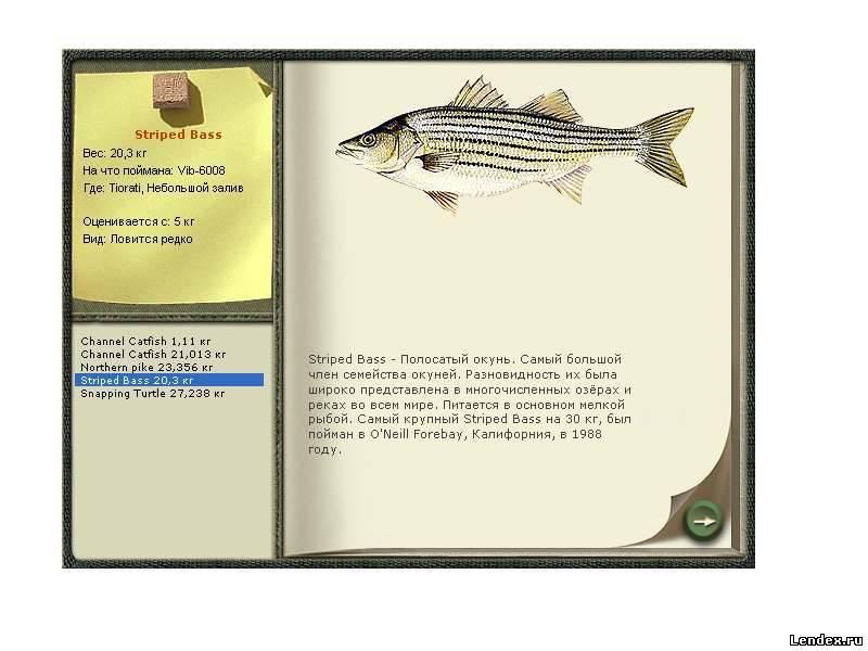 как по немецки рыбалка