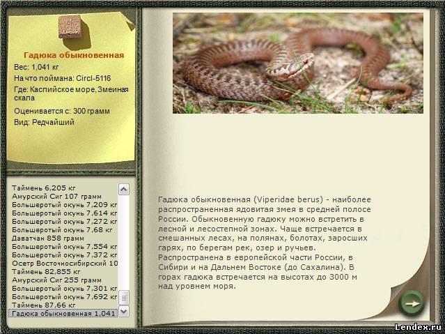 как ловит змей и готовит